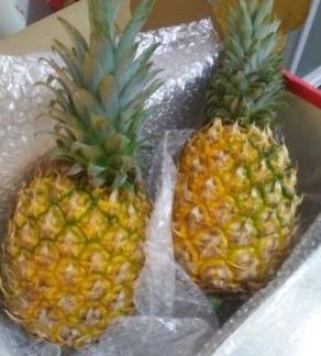 海南香水菠萝2个装( 5斤左右) 20元券后16.8元包邮 买手党-买手聚集的地方