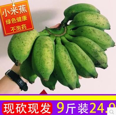 现摘现发 广西特产 小米蕉9斤 券后19.9元包邮 买手党-买手聚集的地方