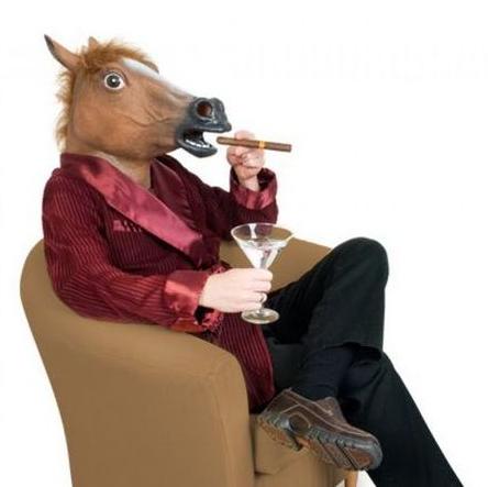 Accoutrements Horse Head Mask 马头面具 9美元约¥60 买手党-买手聚集的地方