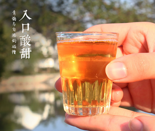 网红酒,青梅汁>10%!浙一家 日式青梅米酒 500ml 券后18元包邮 买手党-买手聚集的地方
