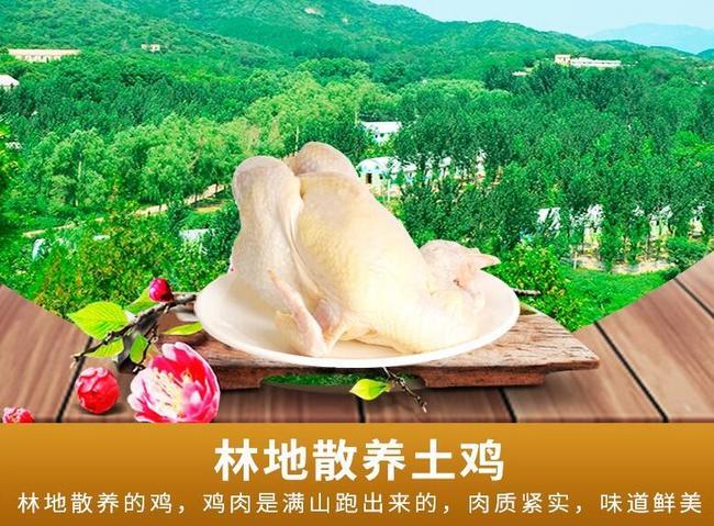 百年栗园 散养土鸡北京油鸡 800gx3只 拍3件119元包邮,Plus会员109元 买手党-买手聚集的地方