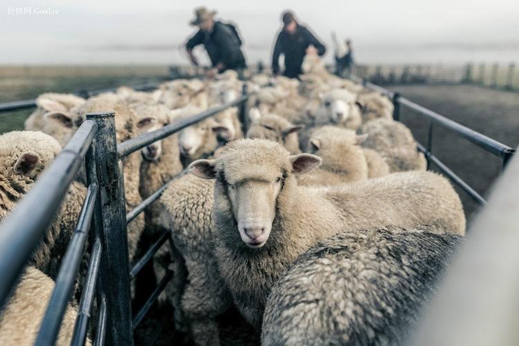商场同款,50%美丽奴羊毛:Kroceus地球科学家 男女 保暖透气运动羊毛衫 券后69元包邮(吊牌价490元) 买手党-买手聚集的地方